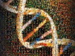 百年足迹,光荣梦想:人类基因组草图完成21周年