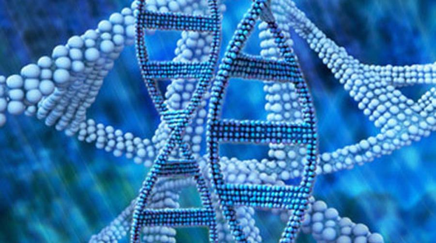GeneMail | 英国十万基因组计划评估液体活检;第18届世界肺癌大会