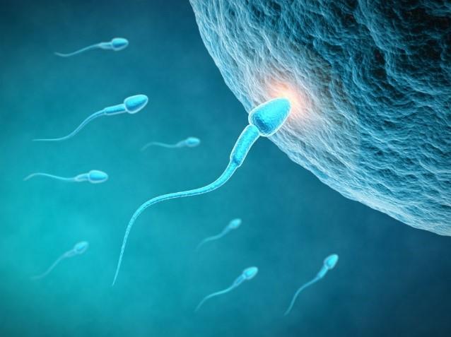GeneMail日报 | 卵子受精障碍致病基因被发现;晚期前列腺癌纳入医保