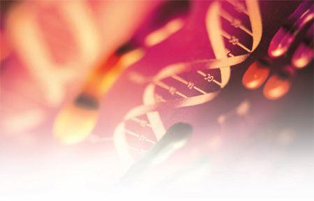 GeneMail周报 | Grail筹备明年在美IPO;仅敲除一个基因可防止小鼠长胖