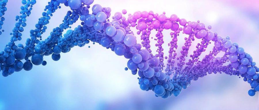 和打马赛克的基因组比对再见,给你专属的高清个人基因组