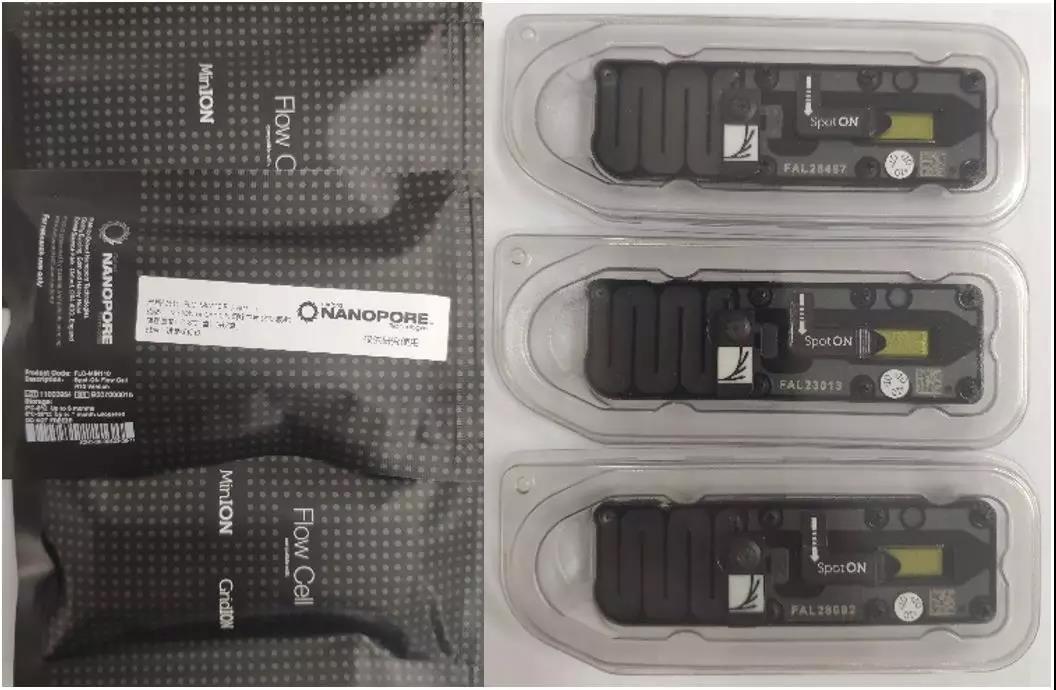 快讯!SV和SNP双剑合璧,Nanopore最新芯片提高DMD基因检测准确度