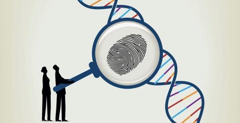 临床基因检测第一关,把好测序文库质量关