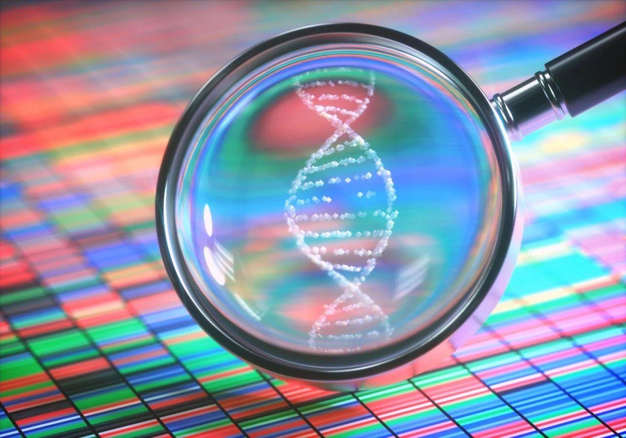 全球2020年Q1基因行业投融资图谱