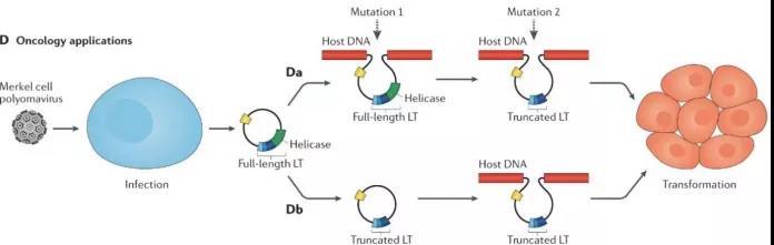 宏基因组测序突破传统诊断方法局限性,质量控制是关键