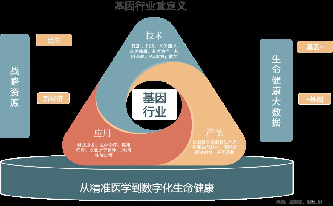 社会担当,有序扩张:2020基因行业盘点及2021展望(上)