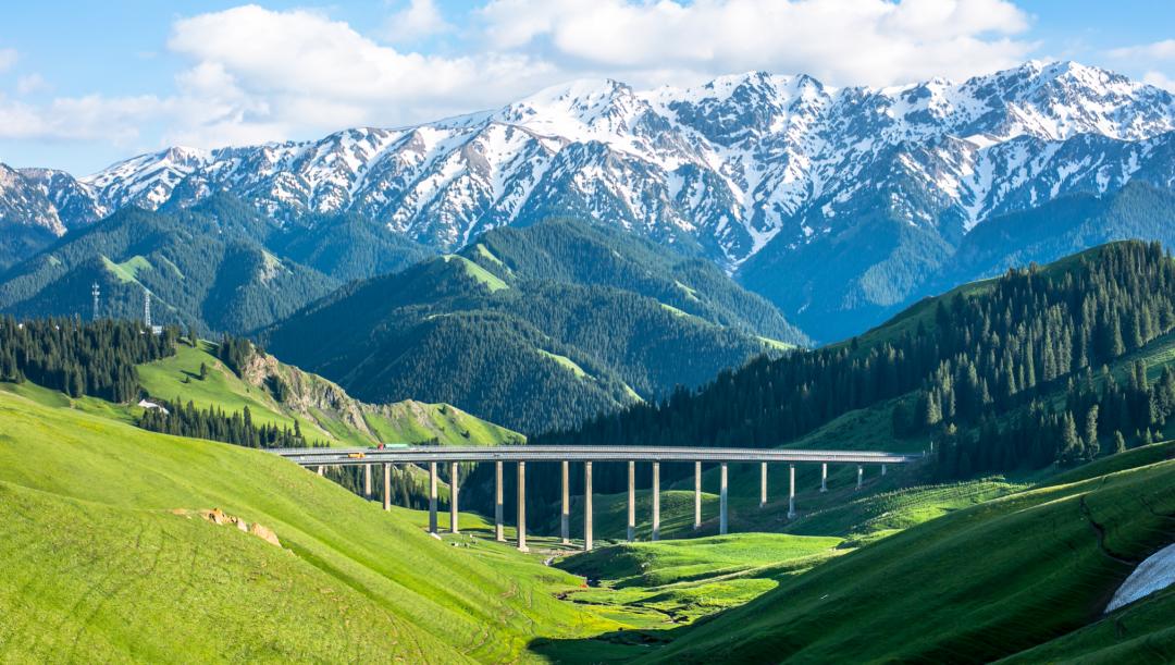 基因机构在桥上看风景,BATJ在山上看… | 基因慧只稀罕你